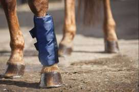 EQUESTA HORSE ICE BOOTS