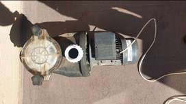 sunflo 0.75kw pool pump for sale Negotiable