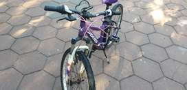 Axis Mountain Bicycle