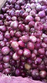Red onions 0