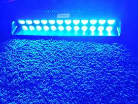Emergency Strobes Blue