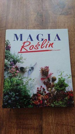Magia roślin,wszystko o hodowli roślin w domu Piekary Śląskie - image 1