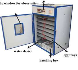 880 CHICKEN EGG INCUBATOR