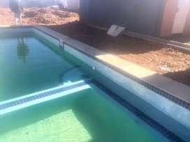 100% Pool thatch and Lapas
