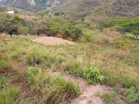 Beautiful Land with view for sale in Chatsworth Demat