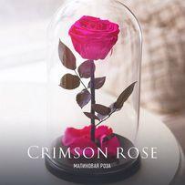 Роза в стеклянной колбе (Коробка,Гравировка) .ХИТ 2018 года