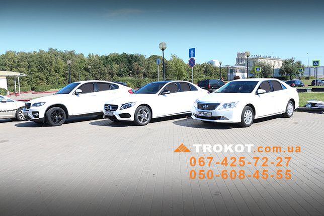 Магнитные сетки TROKOT на любой автомобиль, альтернатива тонировке Киев - изображение 8