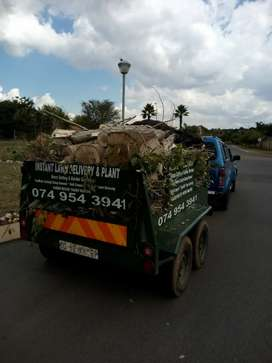 Rubbish removal s and tree felling