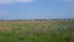 Продажа земельного участка в Борисполе, колектив.садоводство as506496