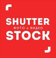 Фото Shutterstock, видео из фотобанка помощь с покупкой
