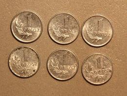 Kolekcja monet PRL