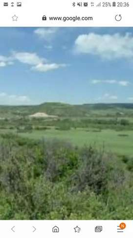 Healthy Vacant piece of land available for rental As soon as Possible