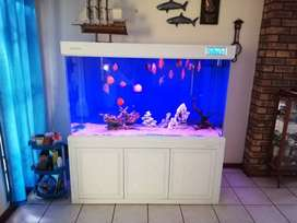 Fish tank aquarium Large with sump for sale