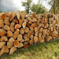 Drewno kominkowe i opalowe.