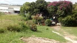 2000 land for rent