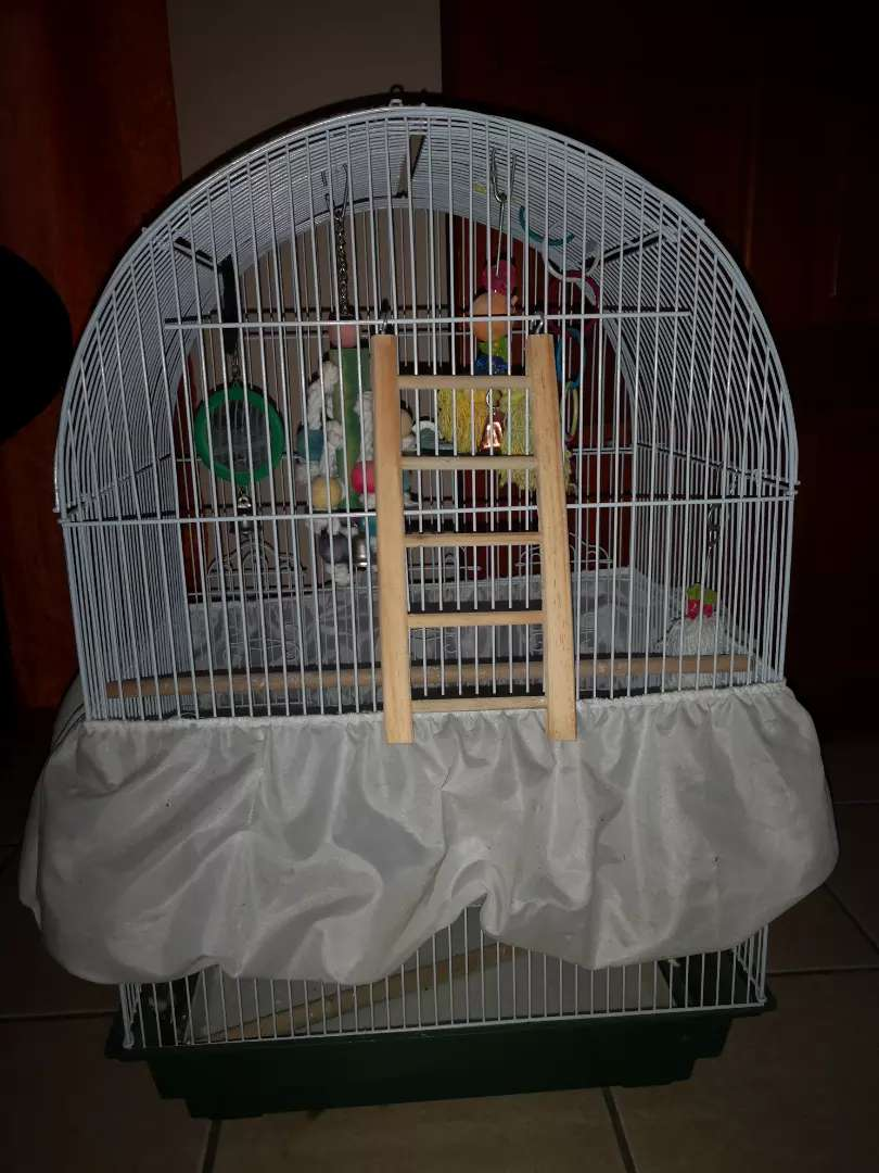 Bird cage for budgies 0