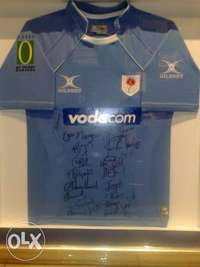 Image of Blue Bulls Signed Jersey. 2008 Currie Cup Winners.