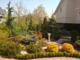 Ландшафтный дизайн, озеленение, автоматический полив