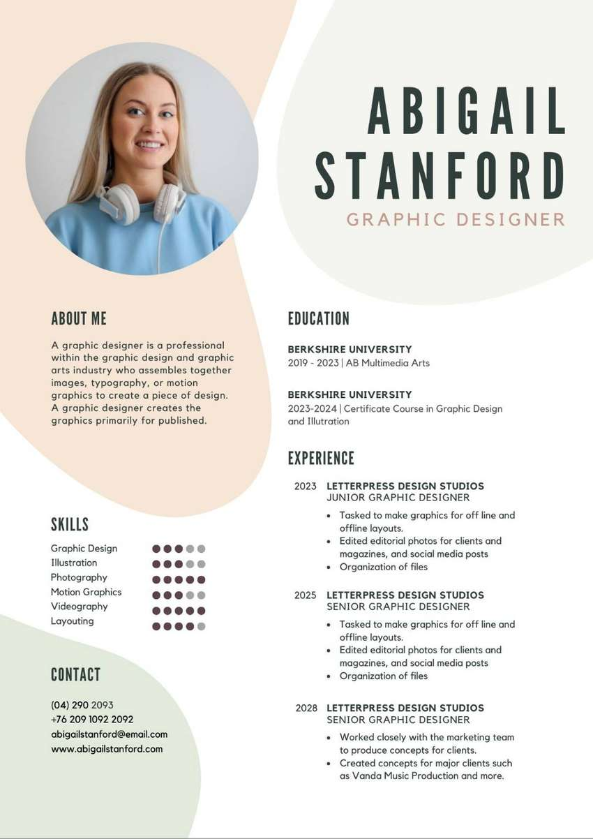 Professional CV Design and Writing 0