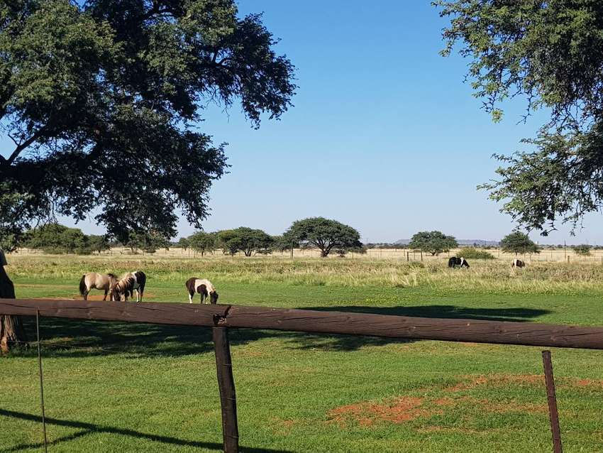 Bargain of a life time. Beautiful property just outside Kimberley 0