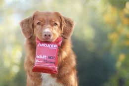 Naturea adult jagnięcina - najlepsza karma dla twojego psa 12kg