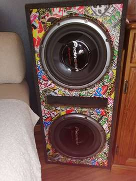 Pioneer Champion series 12inch side by side subwoofer inside sound box