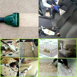 Carpet, leather and upholstery cleaning service