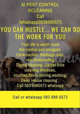 Deep Cleaning Pest Control  bedbugs Rats ants